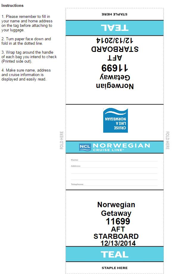 Norwegian 的行李條長這樣