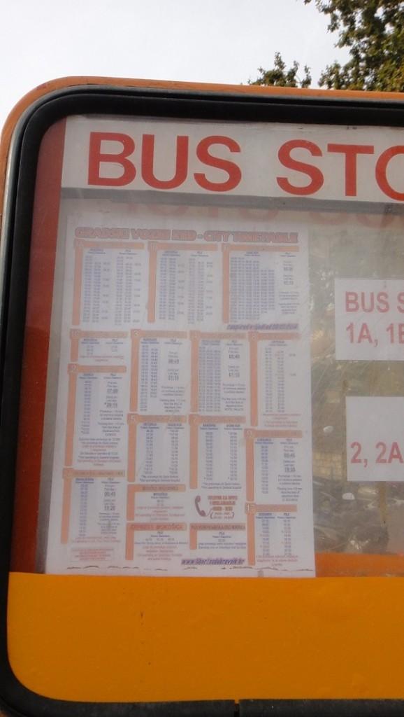 1A, 1B, 1C 公車都可以到 cruise teriminal,不確定的話可以看旁邊的站牌,或是問一起等車的人 (很多人都是要回碼頭的)