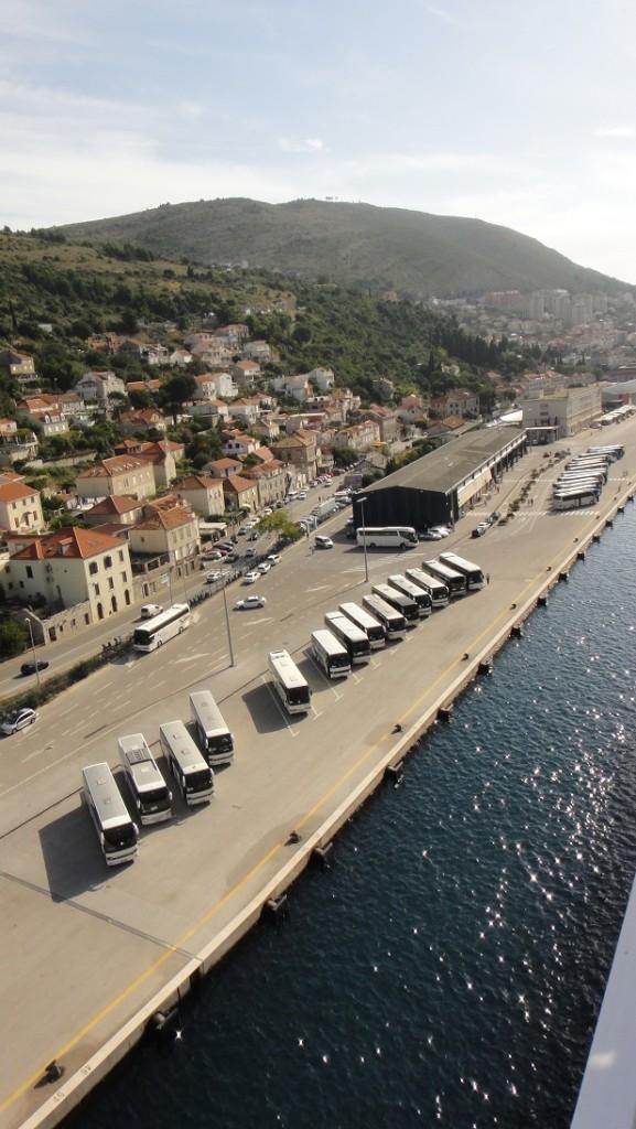 从船上看下去,码头上已经有很多岸上旅游的游览车在等待了