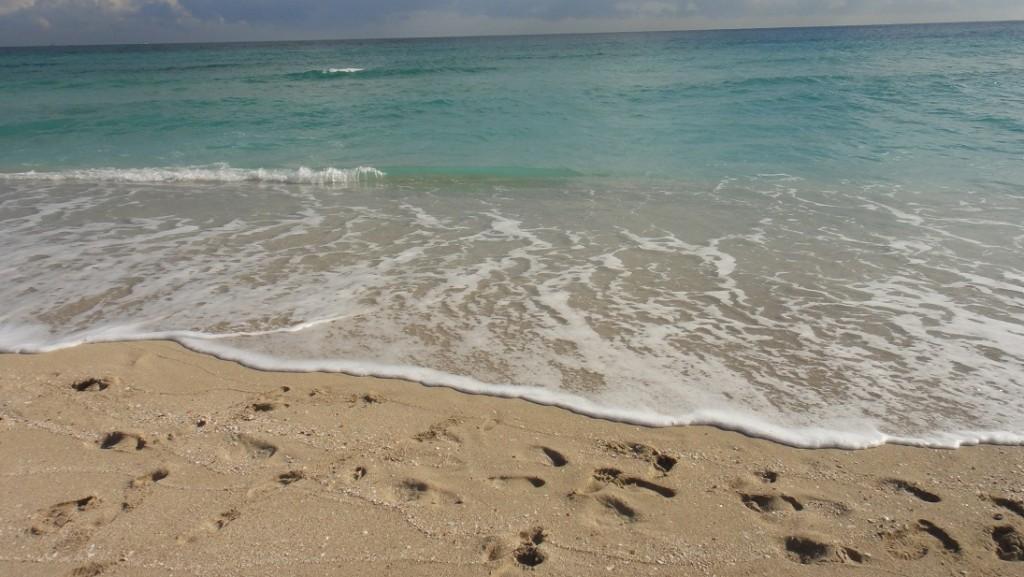 邁阿密海灘相當乾淨