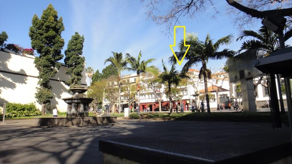 在銅像旁邊有遊客中心 (tourist information)