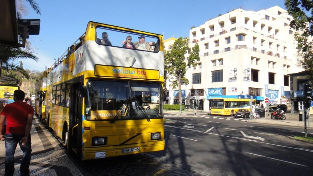 兩家觀光巴士的停靠點就在路邊,一定不會錯過