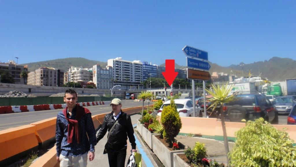 照著人行路線就可以一路輕鬆走出碼頭,租車點就在箭頭指的那個矮矮的大樓裡