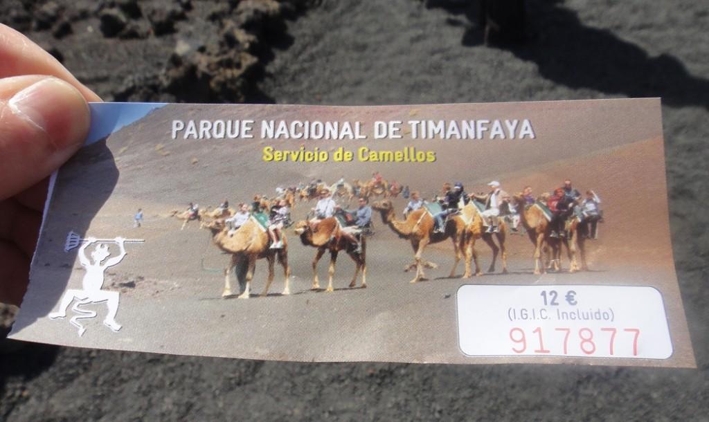 兩人一組 (一隻駱駝) 騎乘約 30分鐘 12歐元