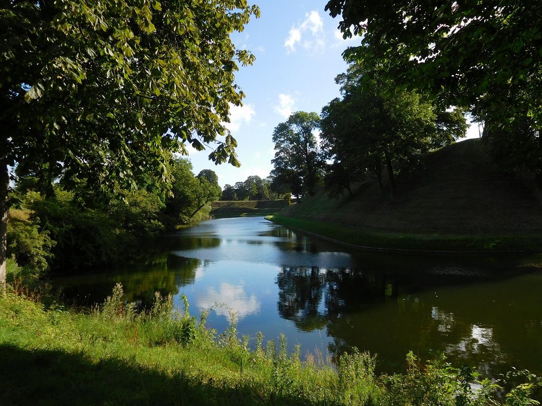夏季綠草如茵的公園