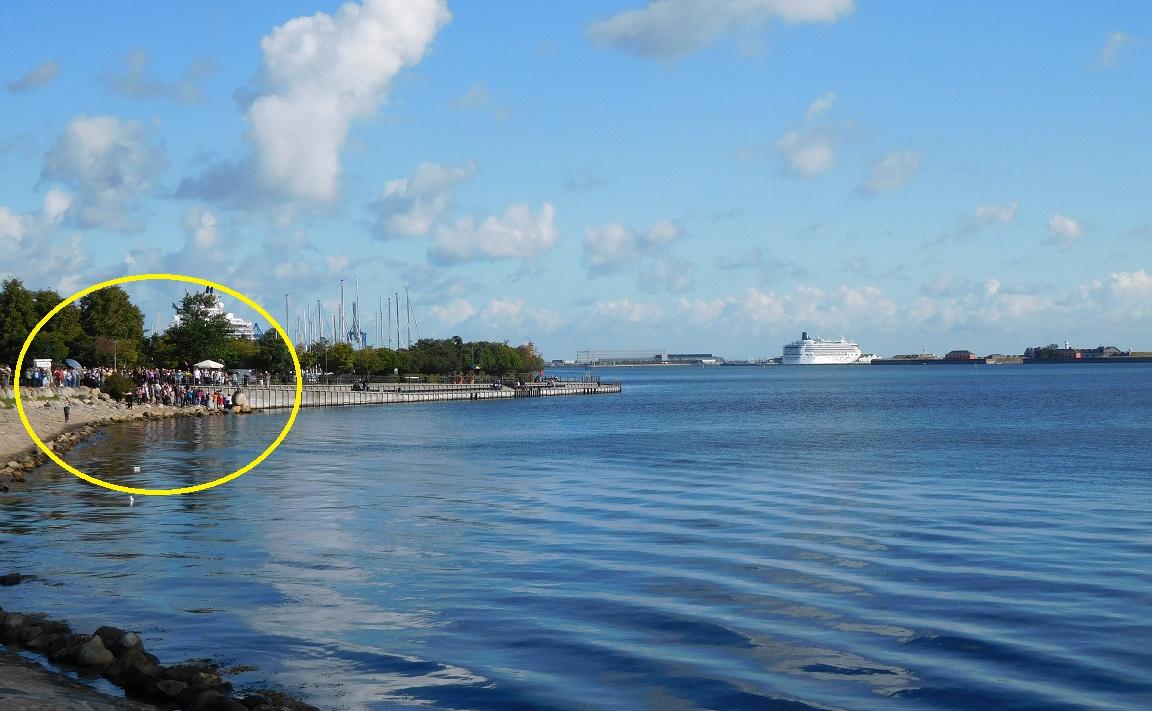 岸邊搶拍小美人魚的人群,和遠方的郵輪 .........